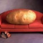 Sofa, So Good